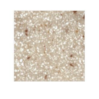 Sanded Gold Dust SG441